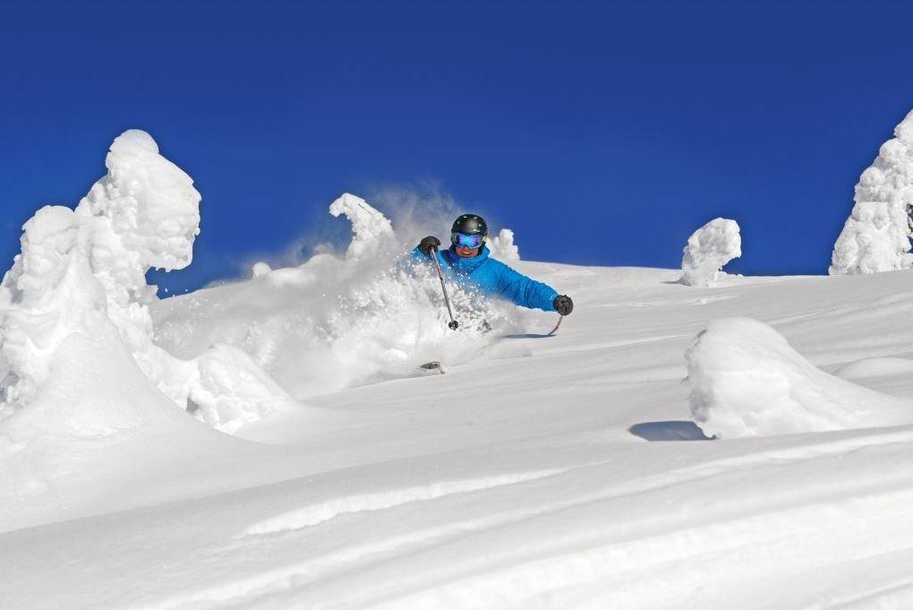 snowghosts grip.jpg