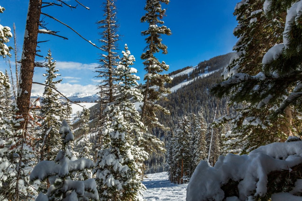 Wintersport in skigebied Beaver Creek in Colorado Amerika