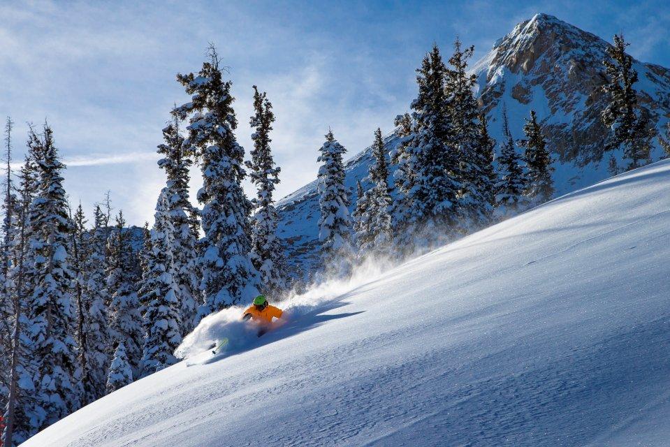 201601_ctb_billo_skier_pow_peak.jpg