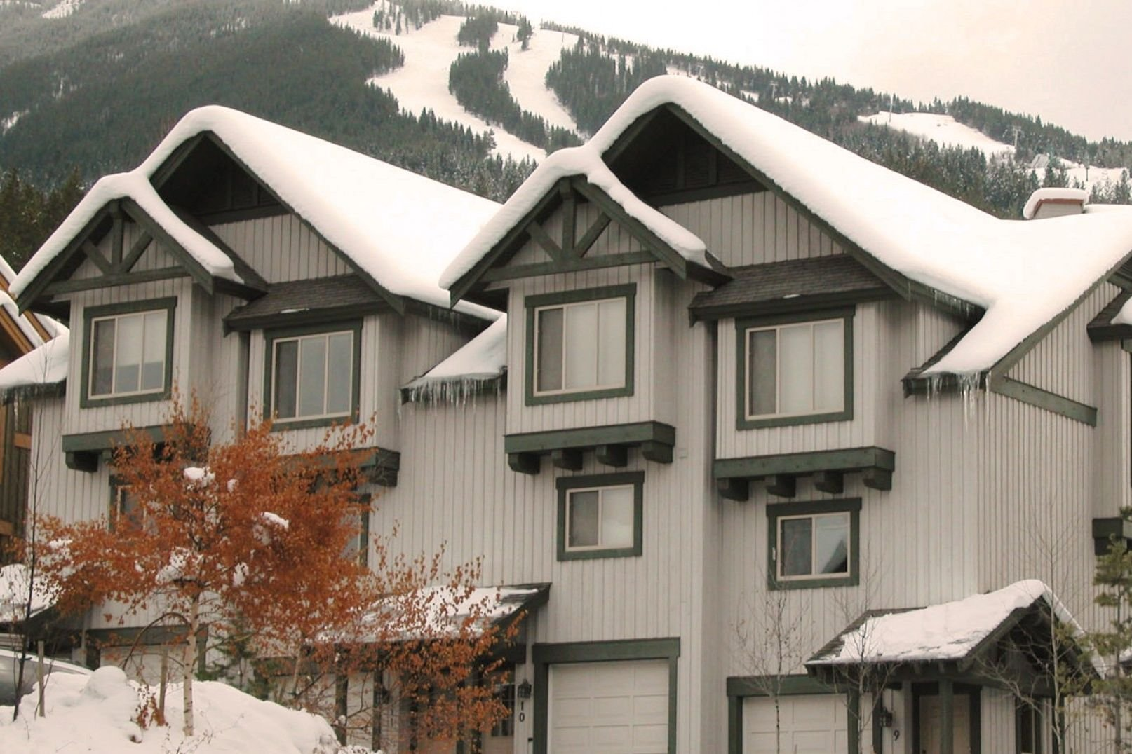 Panorama Mountain Village - harthstone townhomes exterior.jpg
