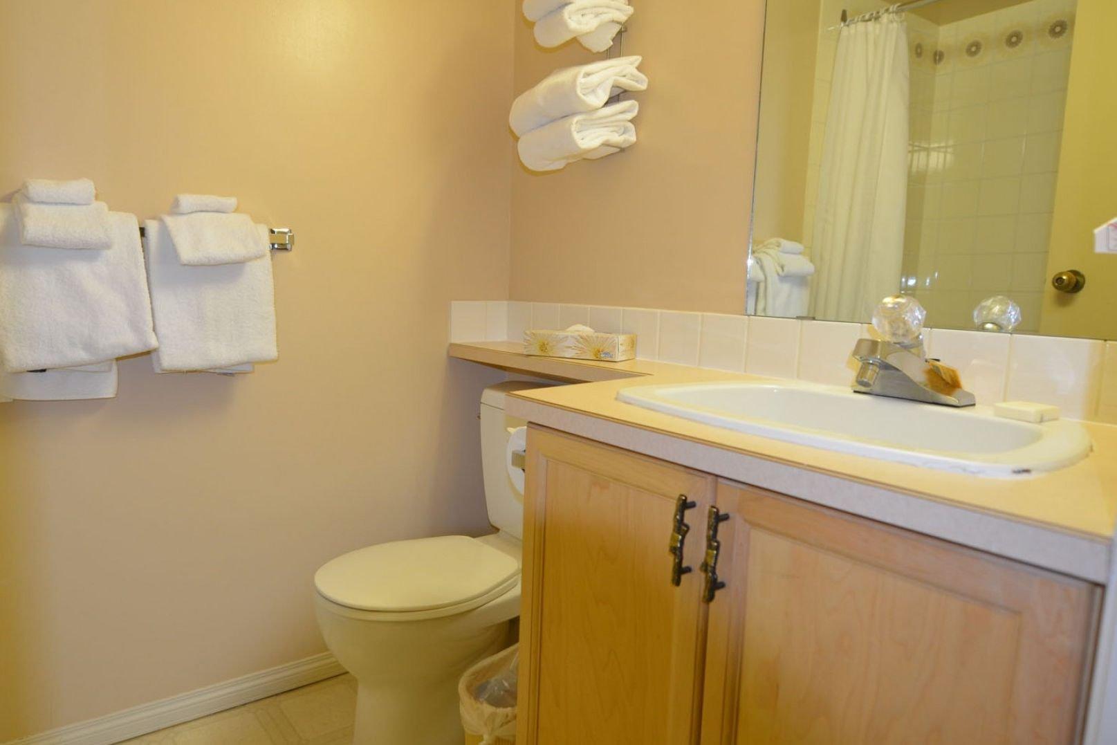 Panorama Mountain Village - toby creek bathroom.jpg