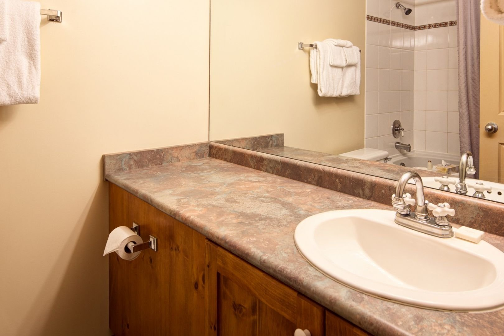 Panorama Mountain Village - ski tip bathroom.jpg