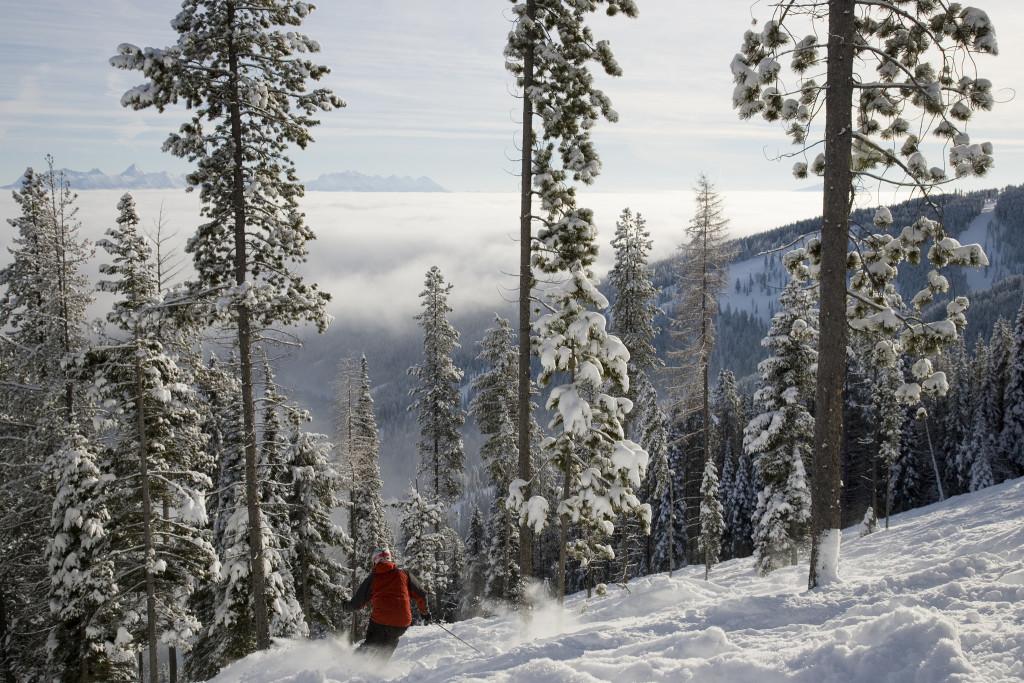 Vraag bij Wintersportcanada je offerte aan voor een skisafari naar KickIng Horse, Kimberley, Fernie en ontdek de poedersneeuw
