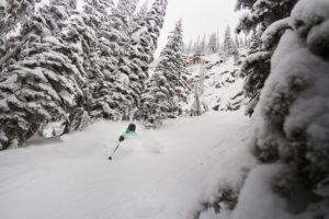 Wintersport in Canada of Amerika, leer de skitermen die specifiek zijn voor je skivakantie zoals Glades