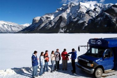 Discover Banff Winter Wildlife Tour