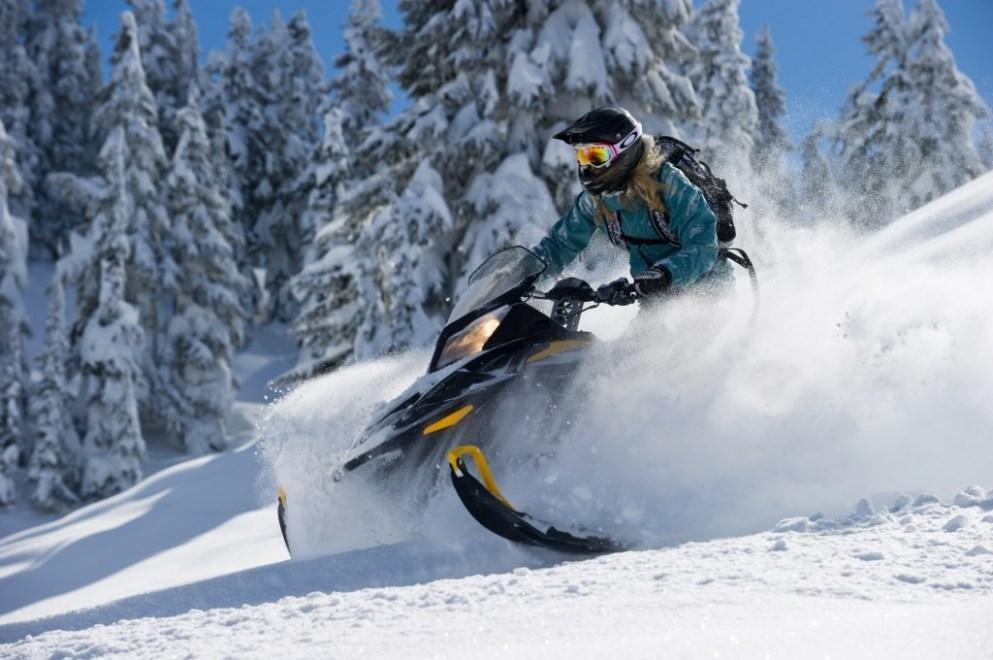 Snowmobile Whistler TAG