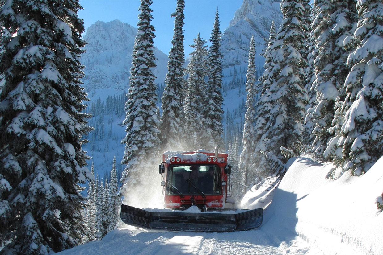 Catskiën doe je het beste in Canada waar er talloze mogelijkheden zijn voor een perfecte wintersport.
