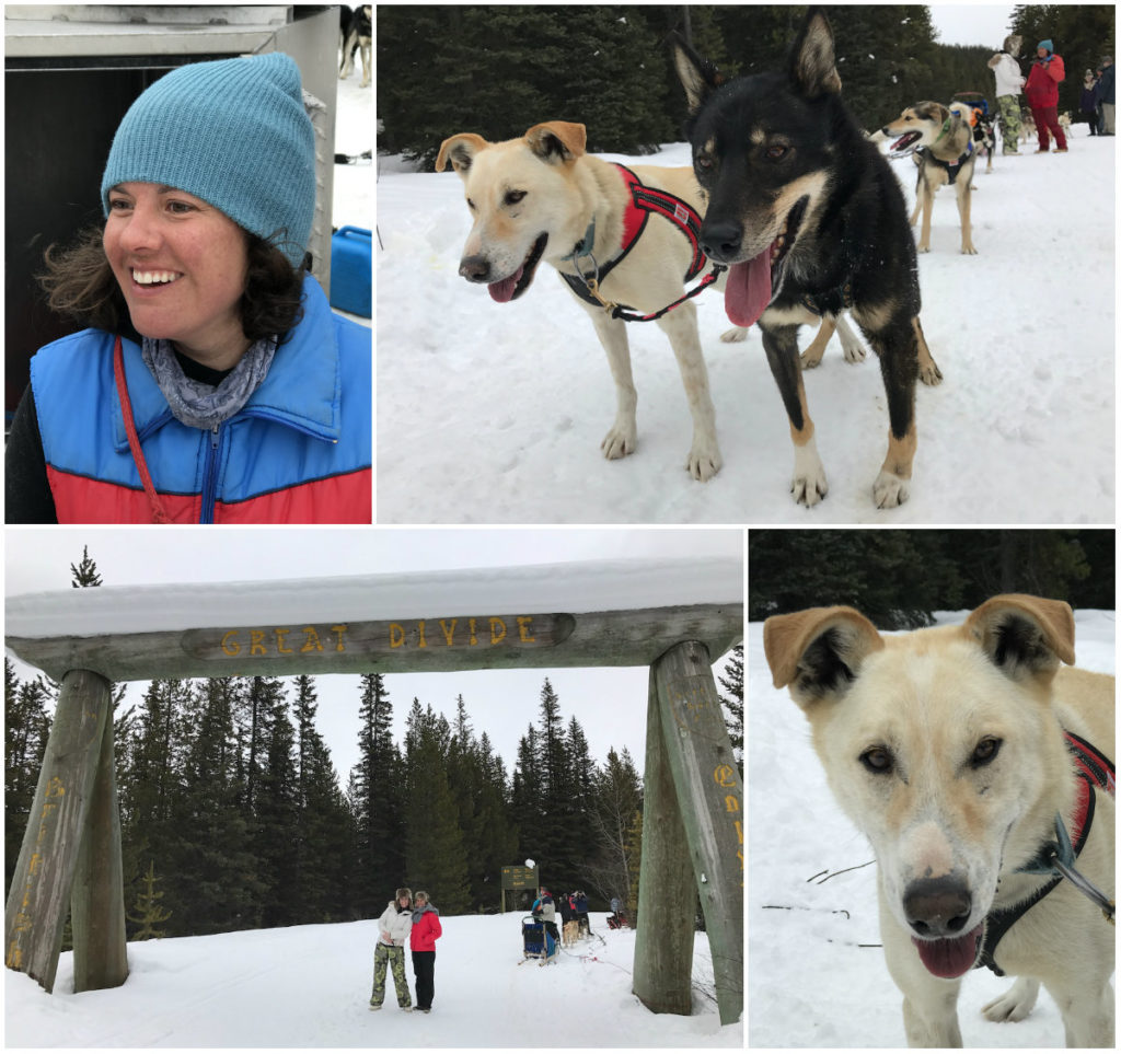 Canadese hoogtepunt is een hondensledetocht door Banff National Park en Yoho National Park