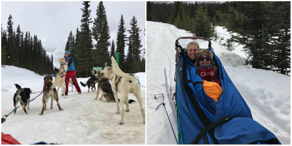 Else en Josee van WinterSportCanadaAmerika  bezoeken Lake Louise en maken kennis met de hondensledetocht